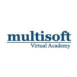 Multisoft Academy